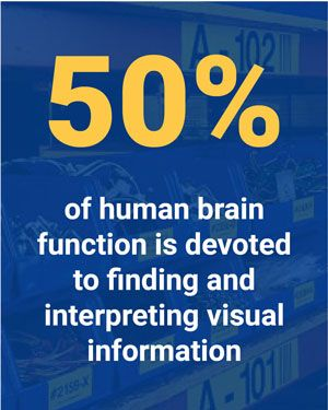 50% of human brain function is devoted to finding and interpreting visual information